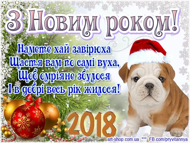 z_novim_rokom_2018.jpg